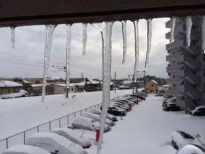 雪のため…